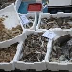 fischmarkt-ausland-aufnahme